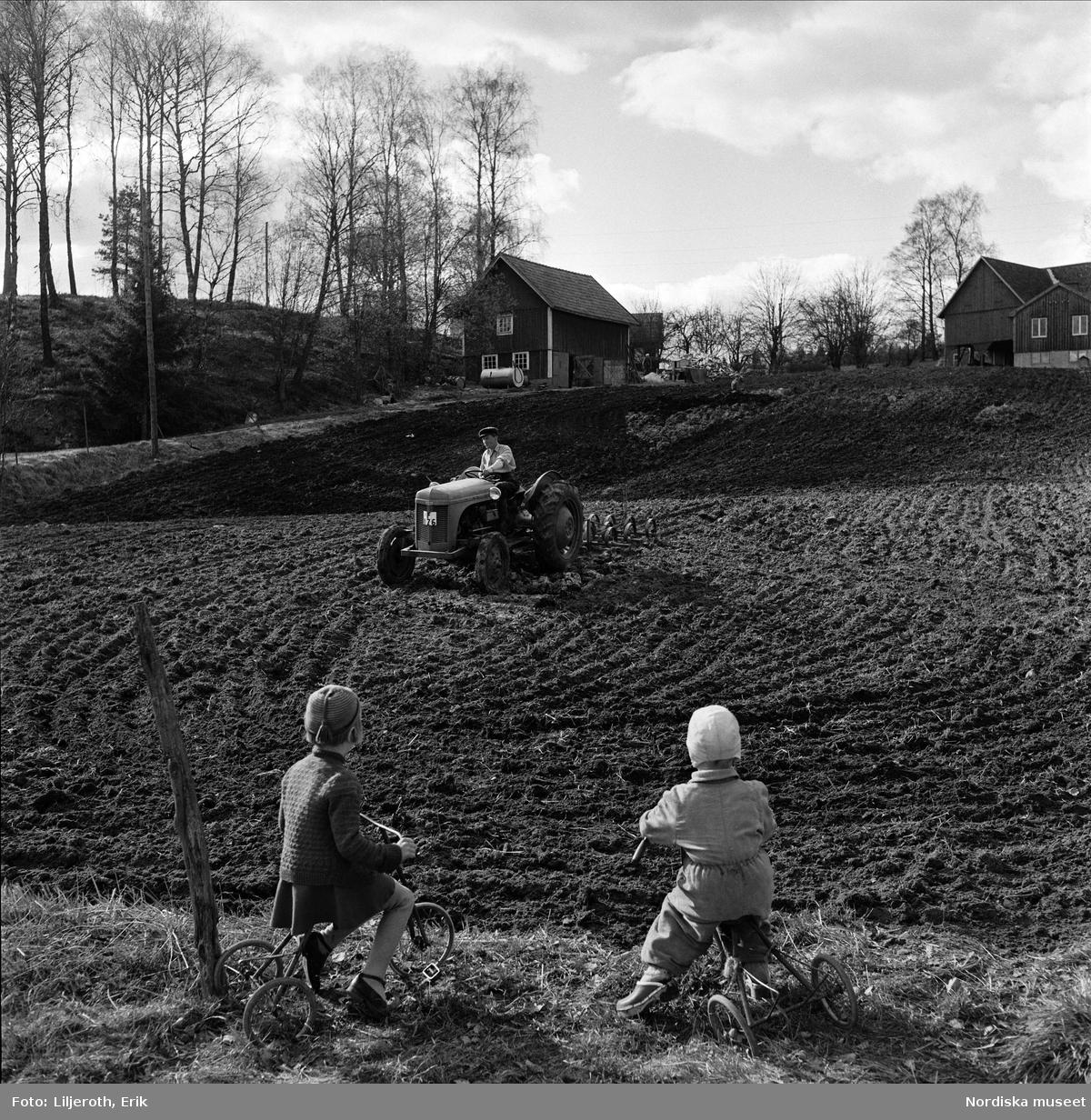 Vårbruk på en småländsk åker. En lantbrukare harvar med traktor (c-pinnharv). I förgrunden två små barn på varsin trehjuling.