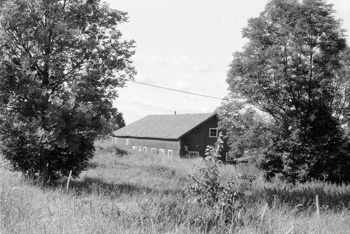 Ladugård, Norrgården, Gränsta, Knutby socken, Uppland 1987