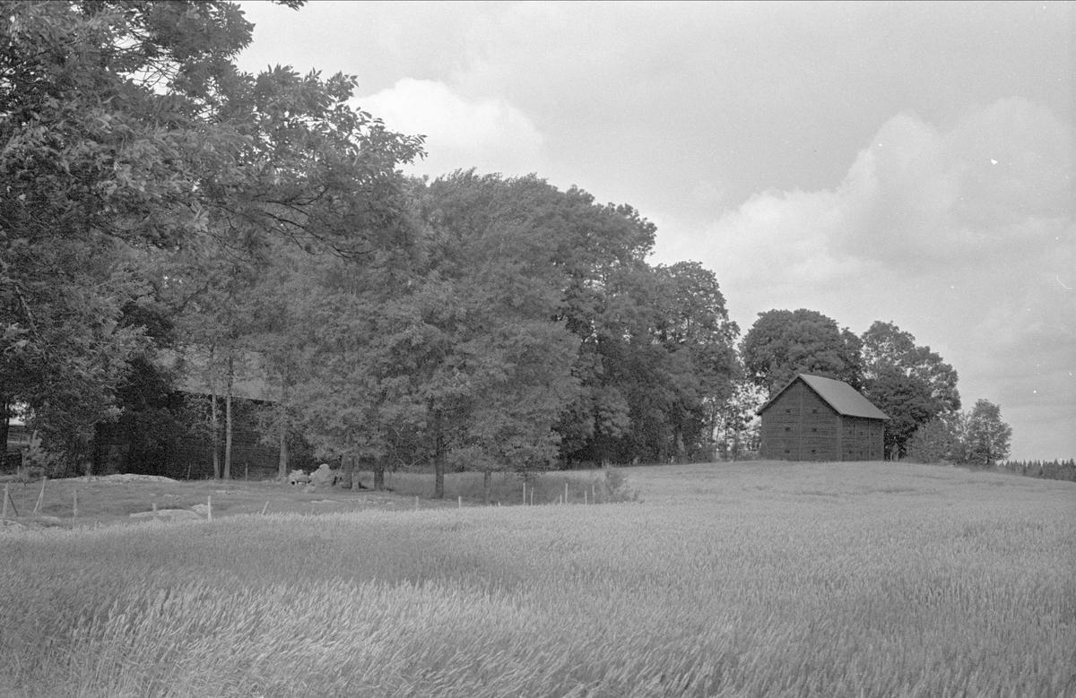 Magasin, Väsby gård, Stora Väsby, Almunge socken, Uppland 1987