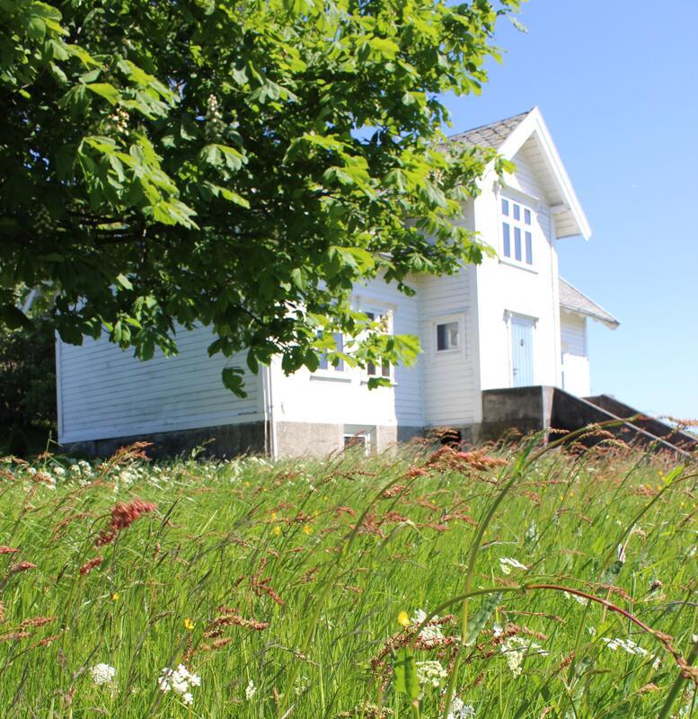 blomstereng og gardshus bak tre (Foto/Photo)