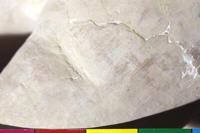 Rester av lag 1 med en gulbrun (svak rødlig) kulør på benet til et av de fire englebarn i sentermotivet. (Foto/Photo)