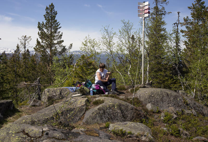 Toppen av Dronningkollen 752 moh. Utsikt vestover mot Blefjell. (Foto/Photo)