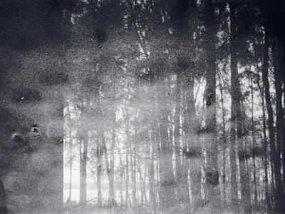 Kate Bell, Destruction 1 - 35mm film, 70x20cm, 2020. (Foto/Photo)