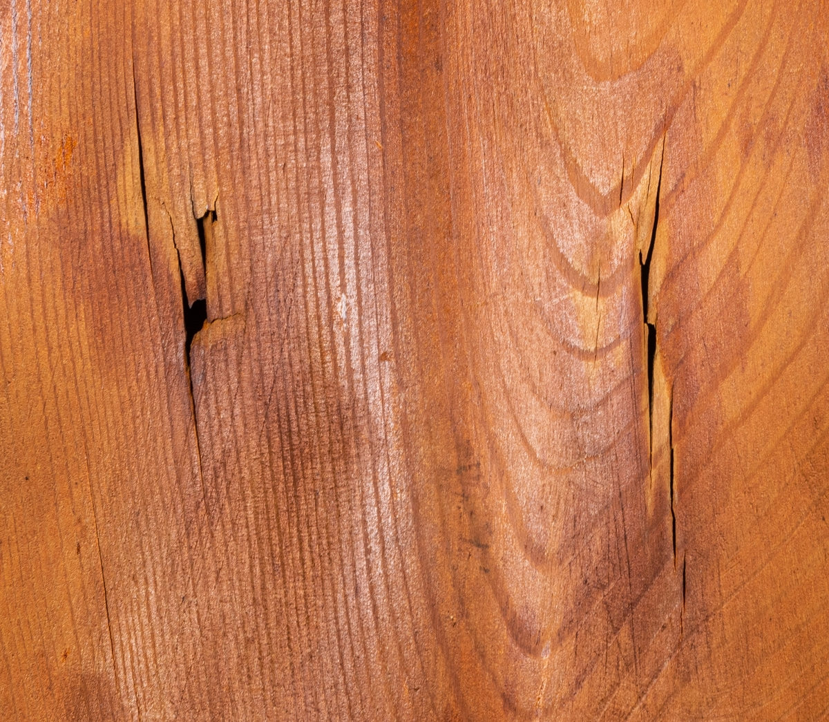 Vägglampa av furuträ skuren i ett stycke i form av mussla formgiven av konstnär Johnny Mattsson, Gävle.