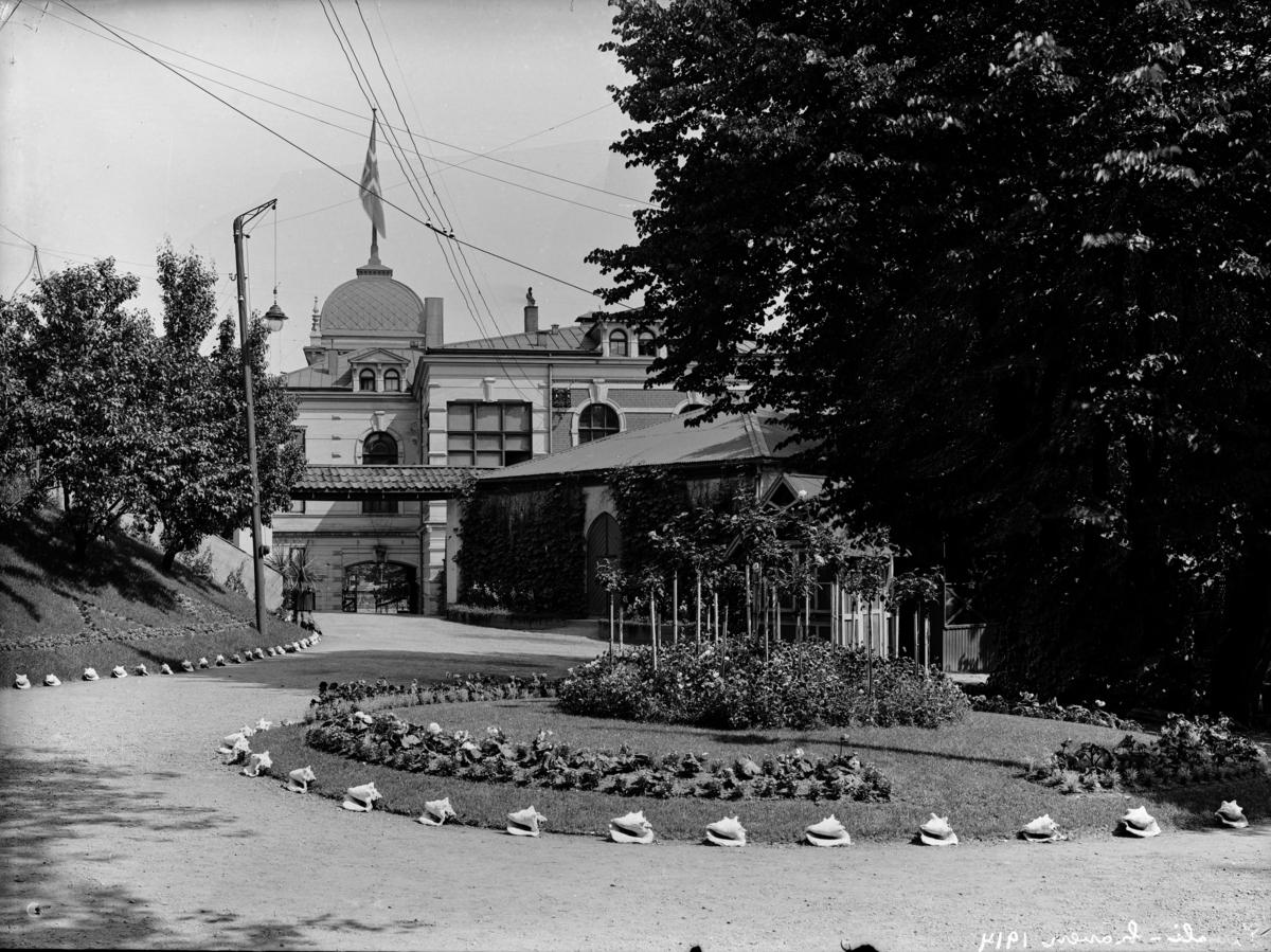 Hagen til Tivoli.