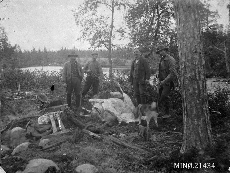 Hågen Olsen,  Olaf Broen,  Anton Storrøsten,  Stor-Hans (Foto/Photo)