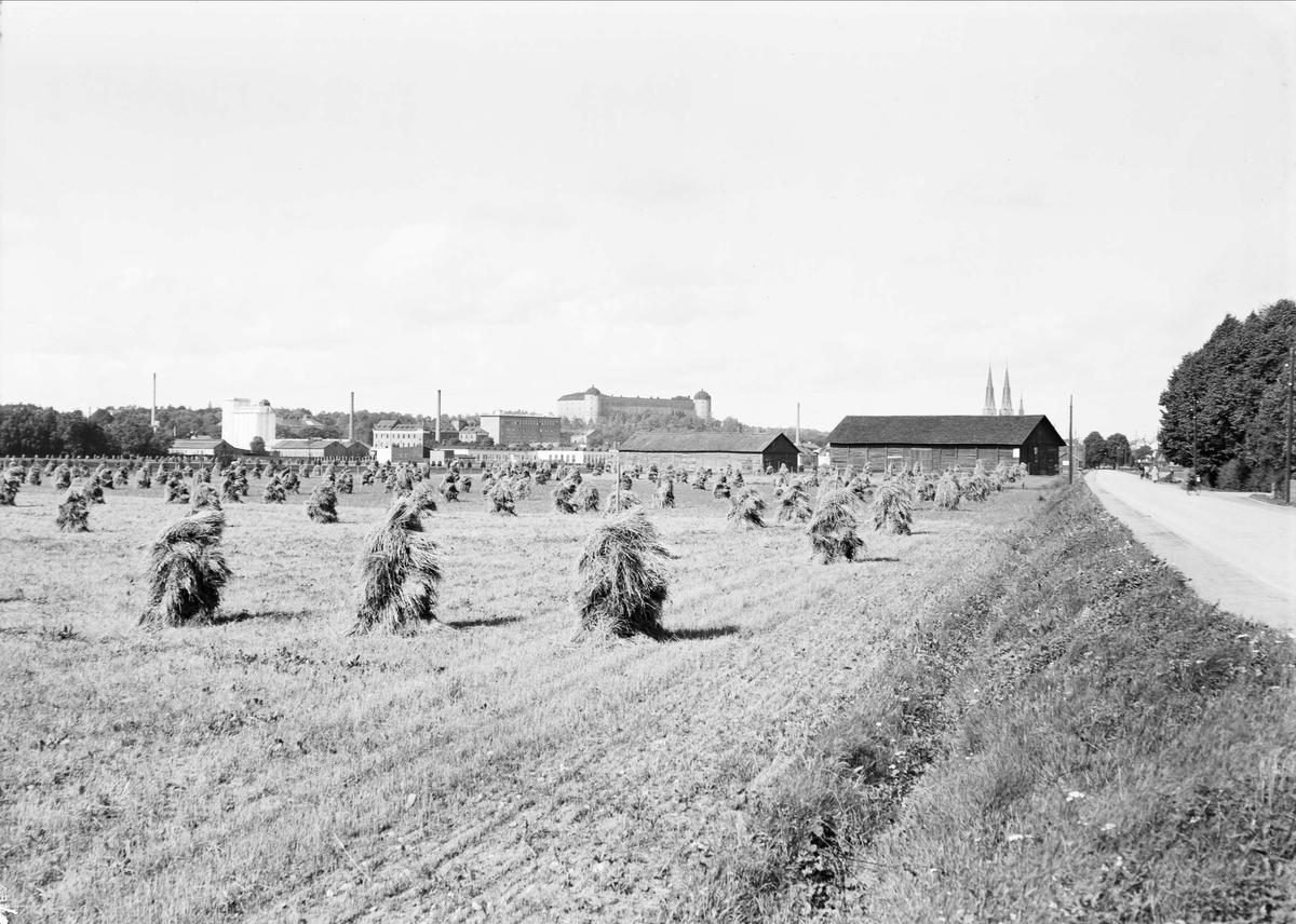 Vy över Kungsängen, Uppsala 1940