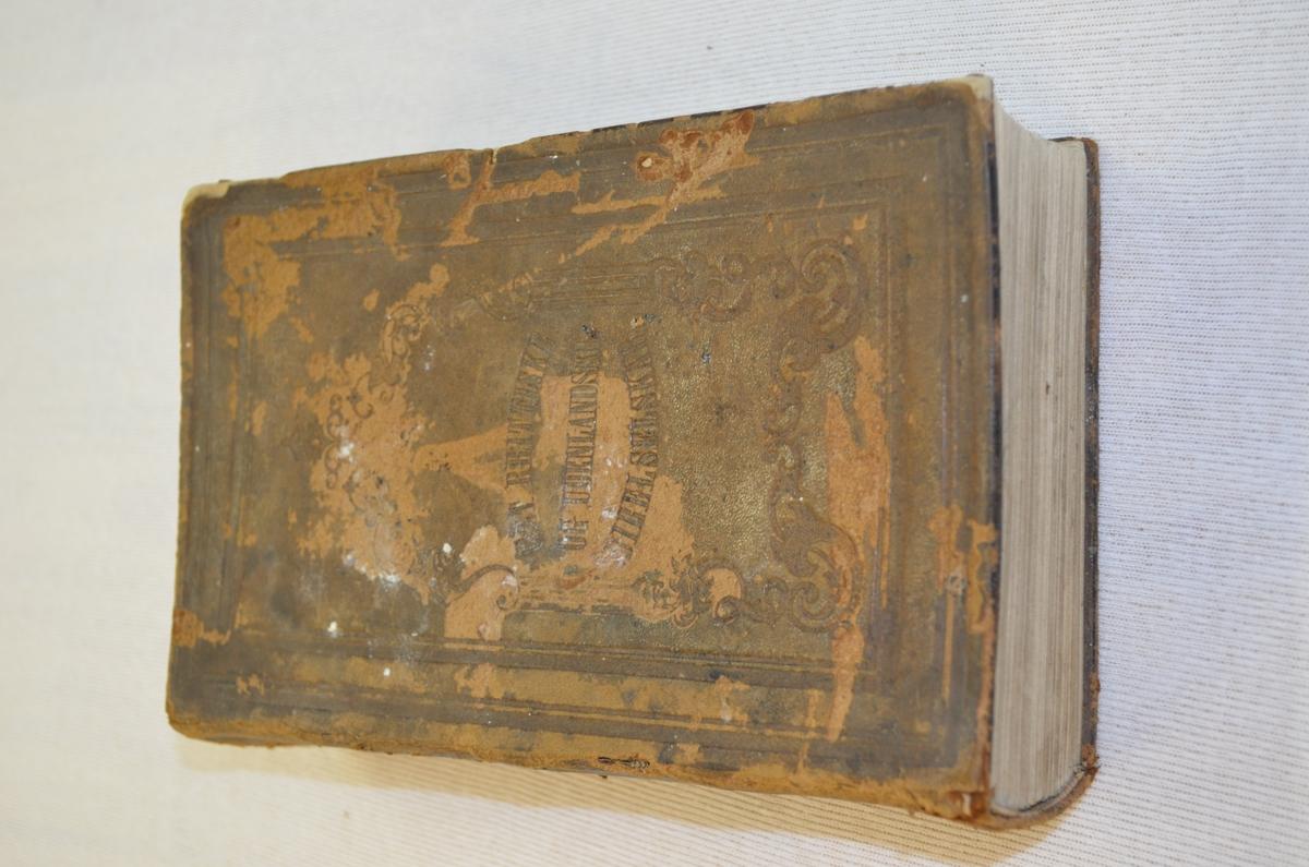 Skinninnbunden bibel.