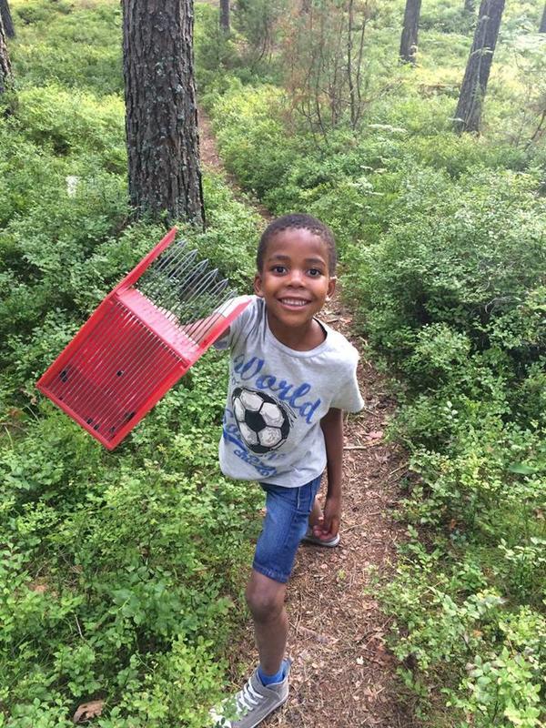 Foto av en gutt som plukker bær