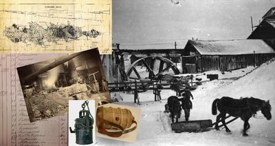 Samlingene collage
