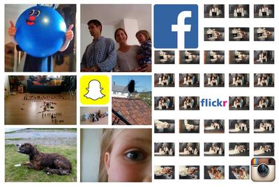 Collage, forside rapport om innsamling digitalt fødte foto