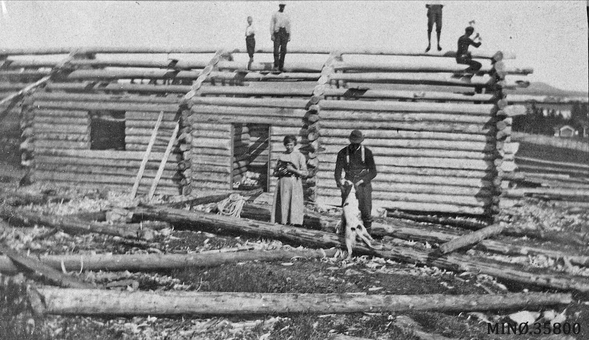 Lafting av seterstue. Karlshaugvollen 1921, bygger ny seterstue.