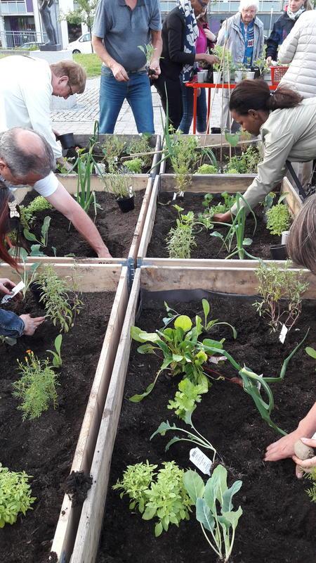 Ivrige kursdeltakere planter urter og blomster. Foto: MiA