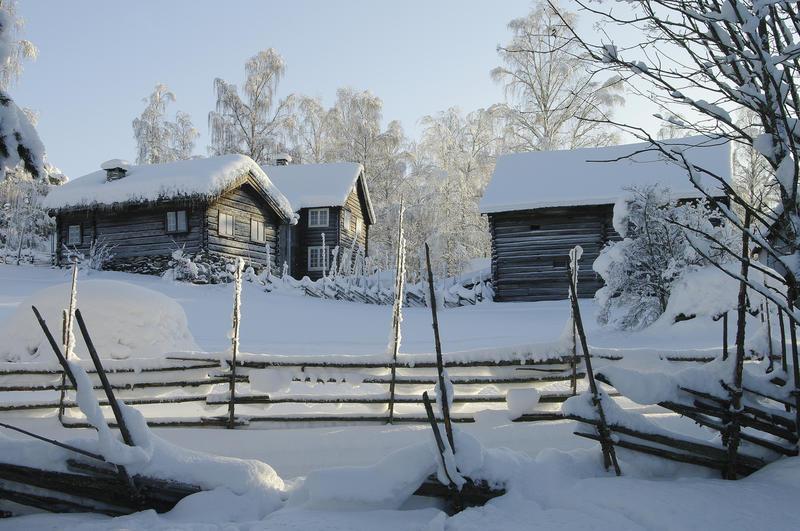 1950-TALET: Rundt 1950 vart museumsområdet betydeleg utvida, og aldri har fleire hus vore flytt til museet enn på 1950-talet. Om sommaren går det framleis sauar, grisar, kviger og høner i området omkring Kviistunet. (Foto/Photo)