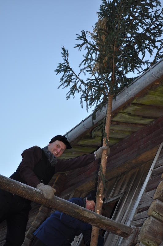 Trond Erling og Ole Haugen setter opp kornband på Odalstunet under Jul i stuene.