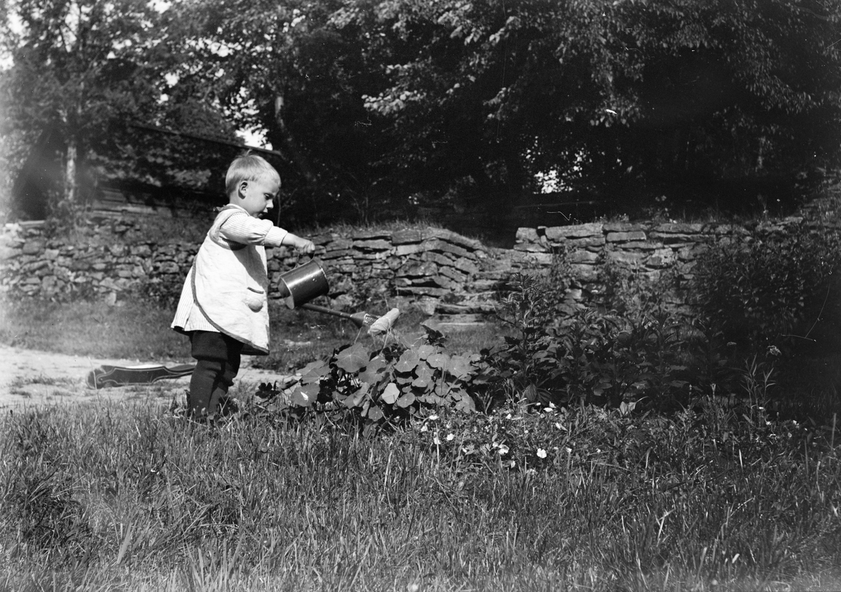 En av Christiane och Ruben Liljefors söner vattnar blommor i trädgård, sannolikt i Sverige