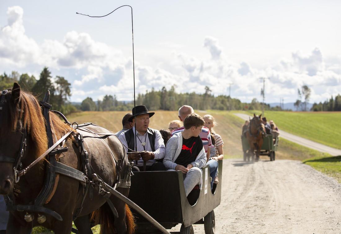 Gamle-Hvamsdagen 2018 hest orientert venstre