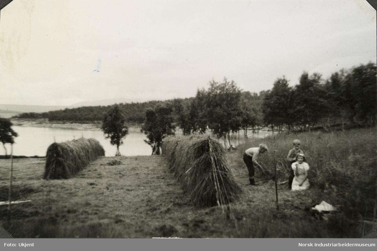 Barna på Øst-Førnes ved hesjer. Anne Dyrland i kjole og broren Olav O. Vågen bak, mens Johan vågen slår eng med ljå