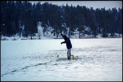Friluftsliv, vinteraktiviteter