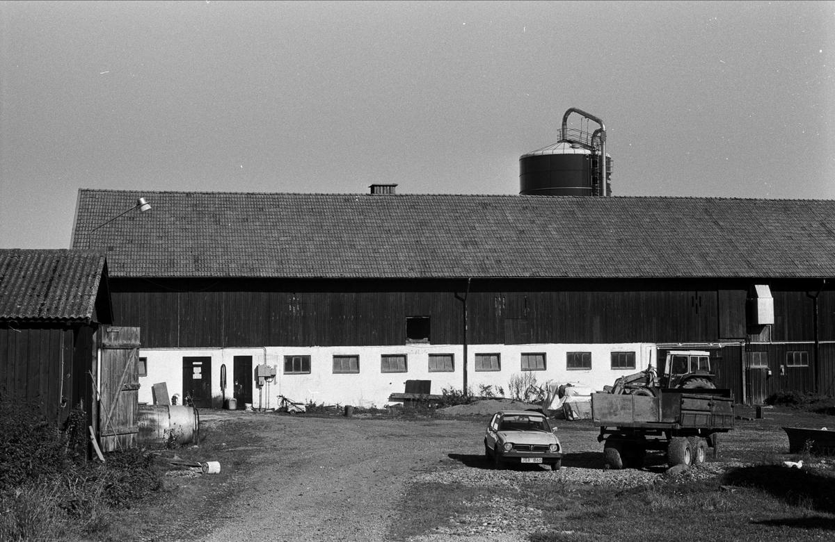 Ladugård, Almunge prästgård, Almunge socken, Uppland 1987