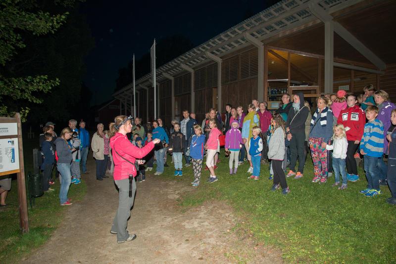 Foto av publikum som hører etter flaggermus