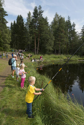 Barn fisker i fiskedammen på Prestøya under Jakt- og Fiskedagene 2014.