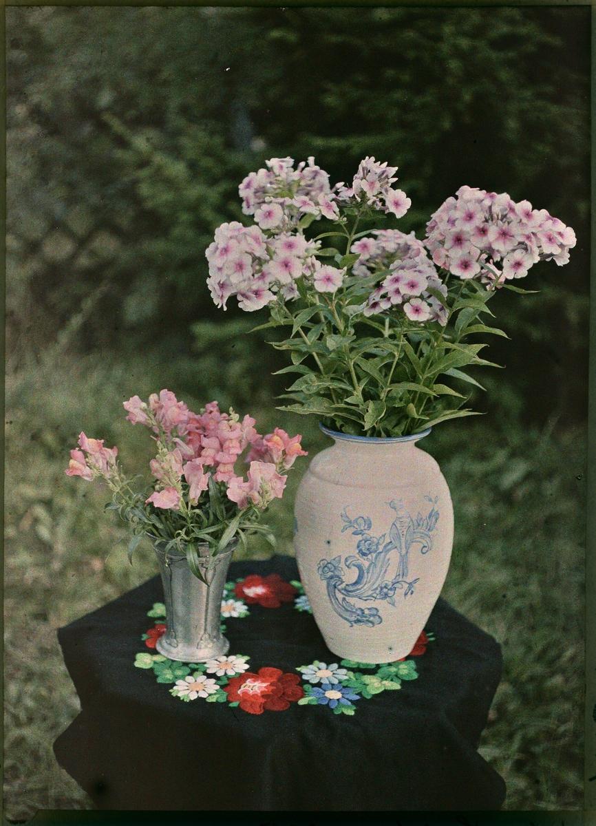 Lumière-autokrom. Stilleben: Blommor i keramikvas och luktärtor i plåtvas stående på ett bord med broderad duk.   Tillhör en serie av 3 bilder: 1 autokrom, 1 vanlig (ortokromatisk) och 1 pankromatisk. Autokrom.