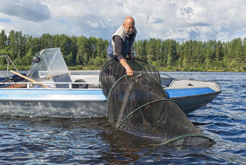 Opptak av fisk fra storruse med Jon Løyland under De nordiske jakt- og fiskedager 2016.