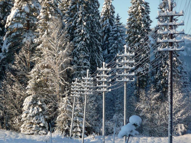 Linjekurser. Notodden Hjartdal 6 (Foto/Photo)