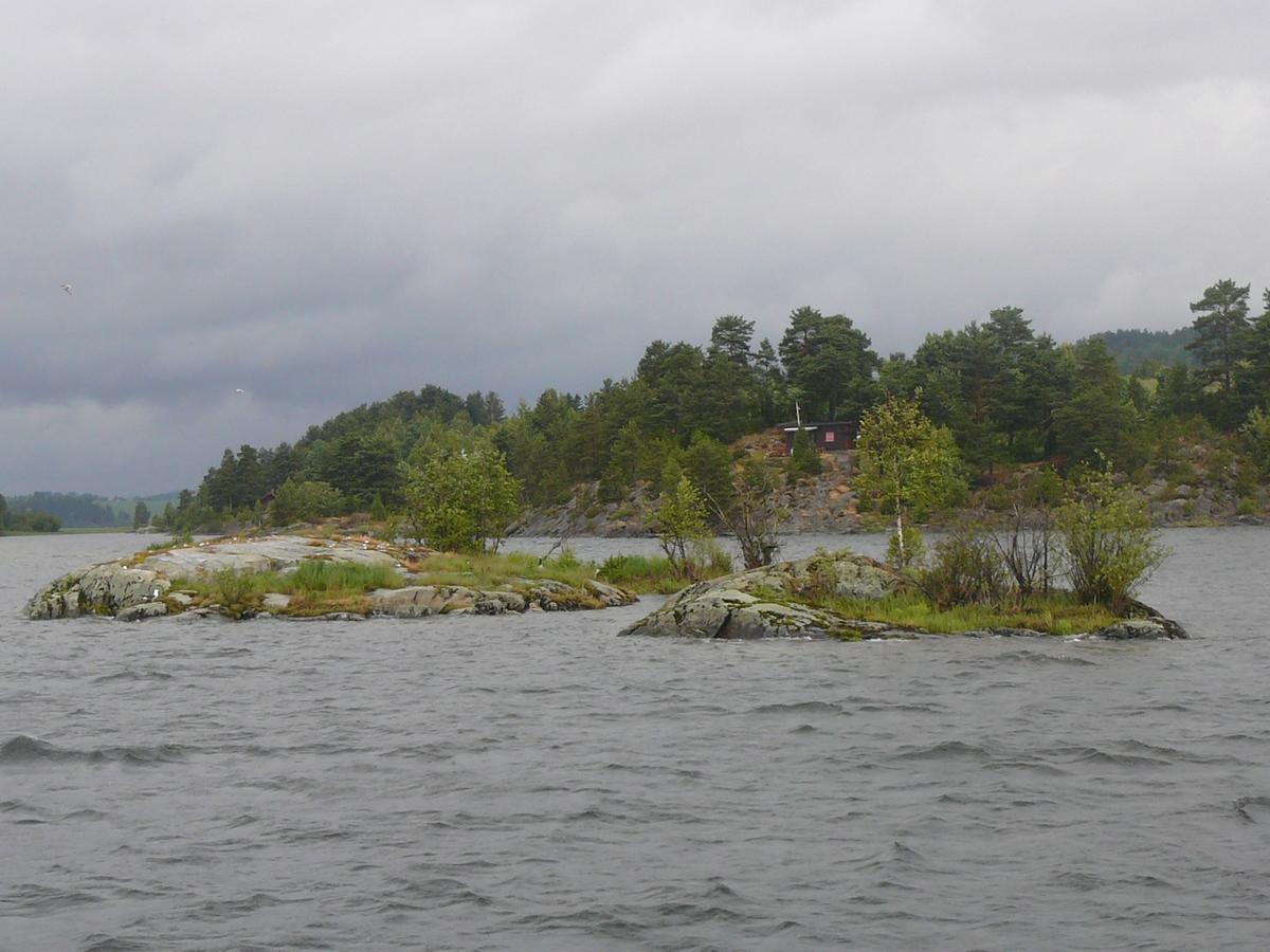 Foto av Karte i Øyeren (Foto/Photo)