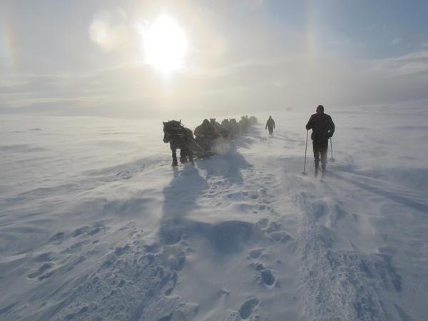 Vinterleden (Foto/Photo)
