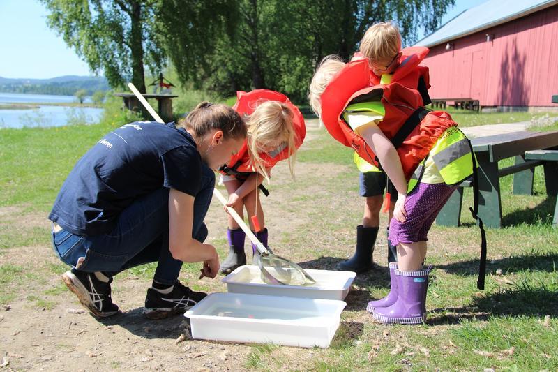 Naturveileder viser barn insekter i vannet