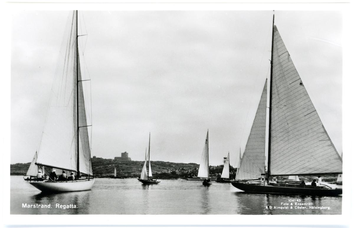Regatta på Marstrandsfjorden