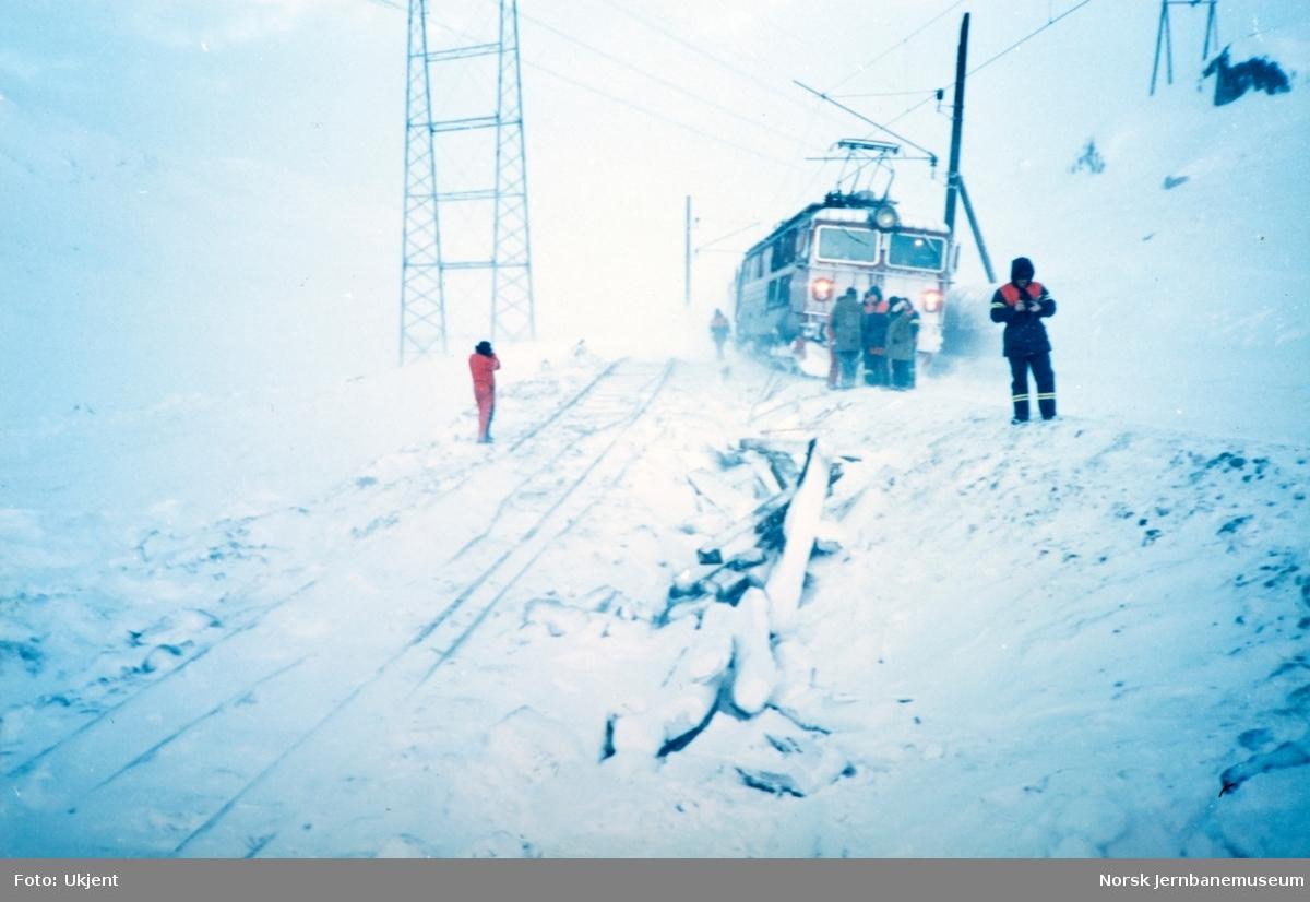 Fra arbeidet med berging av elektrisk lokomotiv El 16 2205 ved Oksebotn mellom Finse og Haugastøl. Lokomotivet og fem godsvogner sporet av etter å ha kjørt inn i en stor snøfonn.