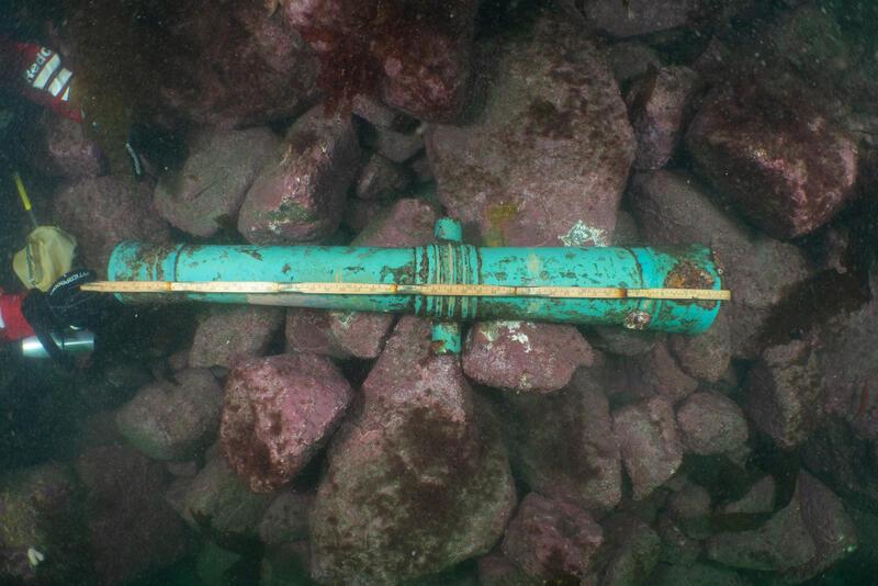 Kanon med tilnærmet turkis farge, stedvis begrodd med rødbrune flekker, ligger på en steinur under vann. Steinene har rødlig farge. Hendene til en dykker holder en tommestokk og måler kanonen. (Foto/Photo)